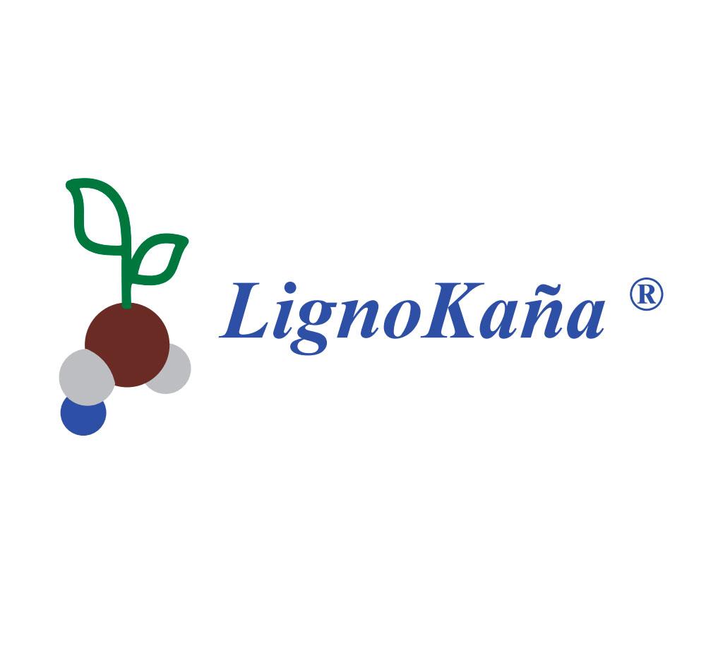 Ejemplo Logo 5